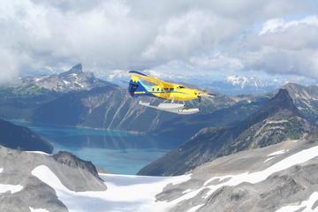 Gletscher Sightseeing-Tour per...