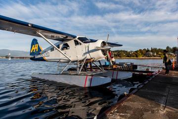 Vuelo en hidroavión a Victoria y crucero de avistamiento de ballenas