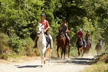 Half-Day Horseback Ride in Tuscany