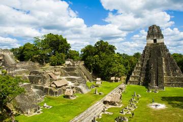 Excursão diurna em Tikal saindo de Flores