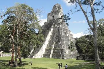 Recorrido de un día a las ruinas mayas Tikal desde Ciudad de Guatemala