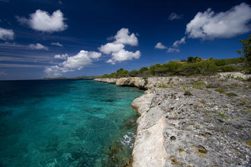 Bonaire Land and Sea Combo Tour