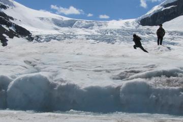 Excursion dans le champ de glace...
