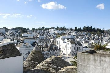 Among Forests and Manor Farms E-Bike Tour from Alberobello