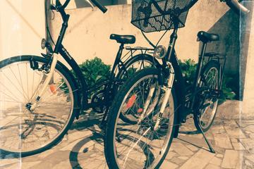 Aluguel de bicicleta - aluguel de 8 horas - Barcelos