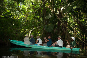 Canoe Tour at Tortuguero National Park