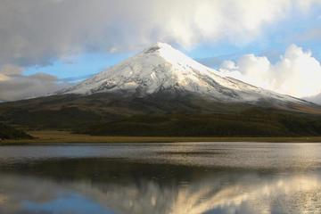 Cotopaxi National Park Private Tour from Quito