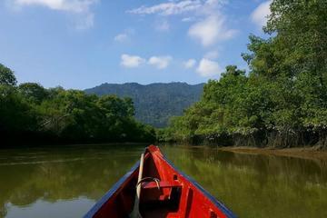Ecological Reserve Churute Mangrove and Cocoa Farm