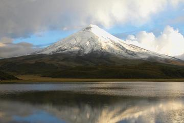 Private Cotopaxi National Park Tour from Quito
