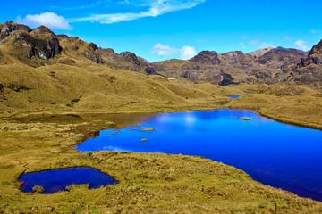 Shared Cajas National Park and Cuenca City Tour