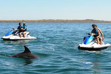 Perth Jet Ski Tour