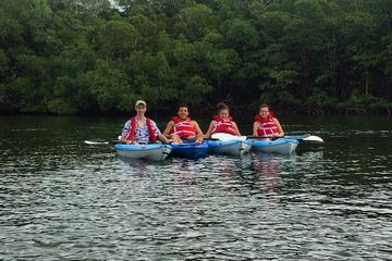 Blackwater River Kayak Tour