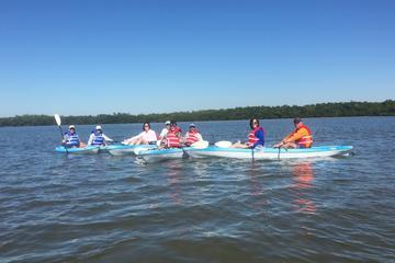 Kayak EcoTour