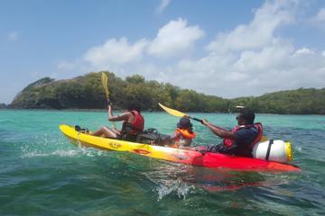 Robert's Bay Guided Kayak Tour in...