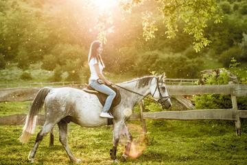 Half-day Chianti Horseback Riding, Lunch and Wine Tasting Tour from Castellina