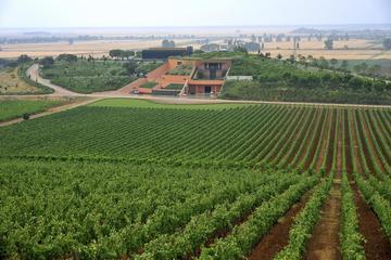 Luxury Maremma wine tour