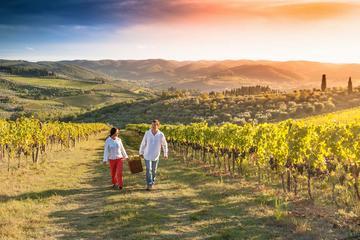 Tour classico del vino in Toscana Da