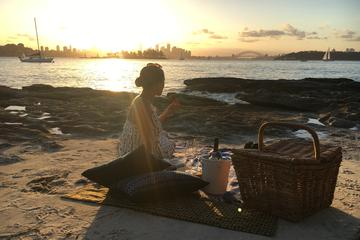 Private Sydney Coastal Tour with Picnic