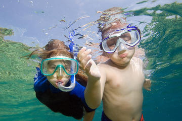 Private Snorkeling to Egmont and Shell Keys with Walking Tour