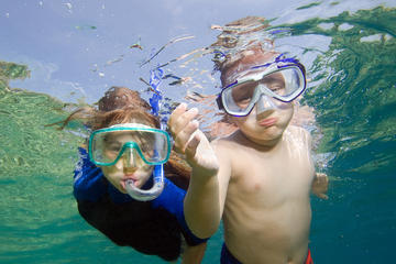 Private Snorkeling to Egmont Key and Shell Key