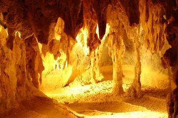 Viagem diurna às Cavernas Chillagoe e ao interior saindo de Cairns
