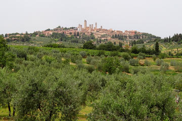 Siena and San Gimignano Day Trip with Wine Tasting