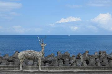 台湾の南海岸と東海岸を巡る7日間のツアー