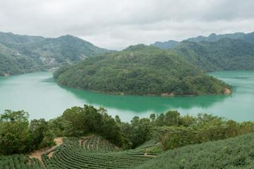 5-Hour Thousand Island Lake and Pinglin Tea Plantation Scenery Tour