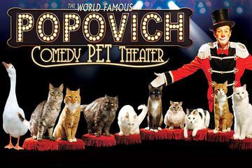 Popovich Comedy Pet Theater en el Planet Hollywood Resort and Casino