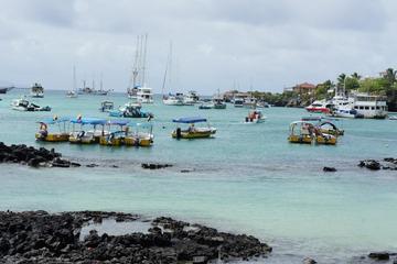 4-Day Galapagos Islands Flash Tour