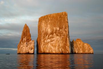 Excursión a Bahía Tortuga y crucero...