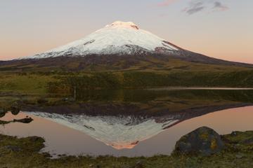 National Park of Cotopaxi Day Trip from Quito