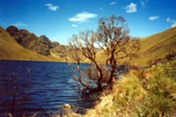 Recorrido de un día completo por el Parque Nacional de Cajas