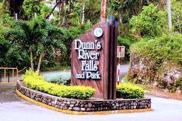 Dunn's River Falls Tour from Lucea