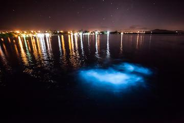 Luminous Lagoon Tour from Montego Bay