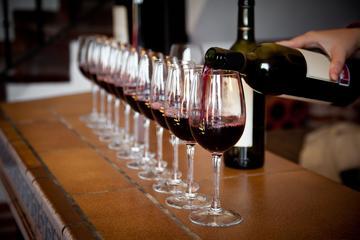 Fantastische Valpolicella-Weinprobe im Stadtzentrum von Verona