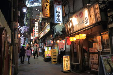 Explore Tokyo's Nocturnal Playground with a Local