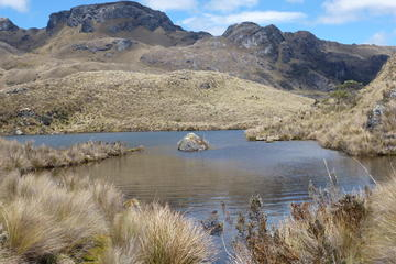 Cajas National Park Private Day Tour