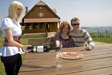 Crotian Zagorje Wine Tasting and Traditional Dinner in Traditional Local Restaurant
