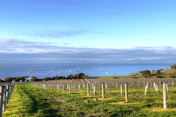 Kangaroo Island Shore Excursion: Food and Wine Trail Tour