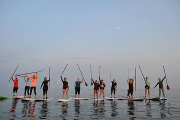 1 Hour Virginia Beach Paddleboard Rentals