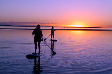 Book 2 Hour Virginia Beach Paddleboard Rentals on Viator