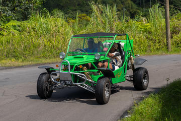 Soufriere Safari Buggy-Tour
