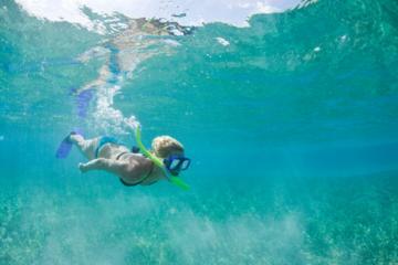 Cruzeiro para mergulho com snorkel em Molokini e Kealewai