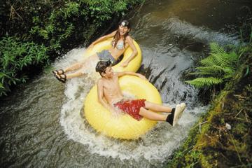 Tubing-Abenteuer im Hinterland von Kauai