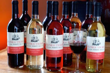 Day Trip Wine and Wine Jelly-Sauce Tasting on Plymouth Bay near Plymouth, Massachusetts