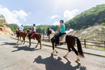 2.5-hour Horseback Ride and Volcano...