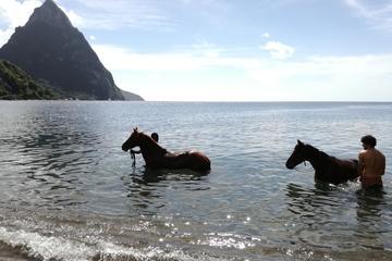 Piton Beach Ride