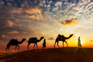 12-day Private Tour: Rajasthan and...