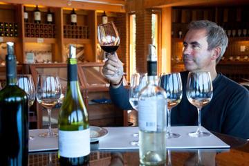 Italienische Wein- und Käseverkostung...